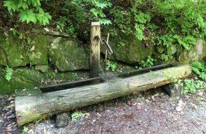 Forstbrunnen